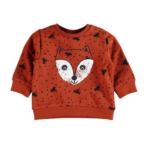 NAME IT Baby Jungen Brush-Effekt-Sweatshirt DIETER